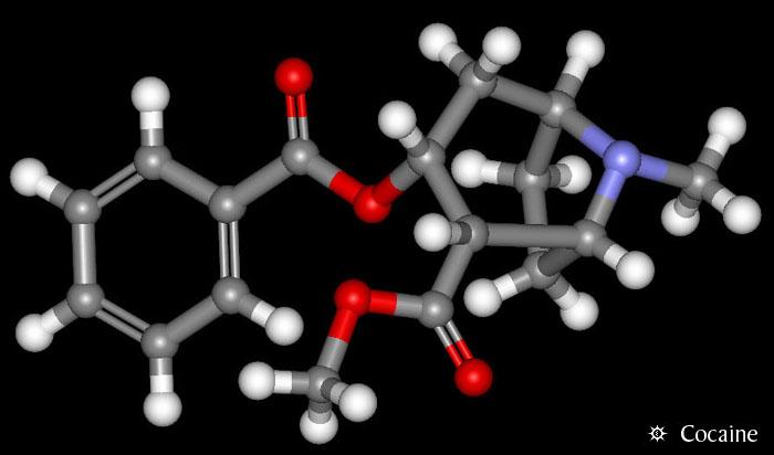 Erowid Chemicals Vaults : Molecules : cocaine_3d