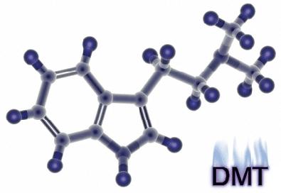 dmt molecule ile ilgili görsel sonucu