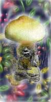 Erowid Psilocybin Mushroom Vault : Tea Preparation